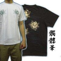 紅雀 和柄 【髑髏牡丹の流水】 Tシャツ (名入れ刺繍可)通販 刺青 和彫り デザイン