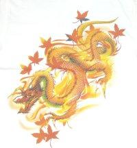 紅雀 和柄 赤龍 黒龍 フルカラー プリント Tシャツ 刺青 和彫り デザイン