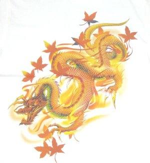 画像1: 紅雀 和柄 赤龍 黒龍 フルカラー プリント Tシャツ 刺青 和彫り デザイン