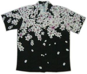 画像1: 和柄 アロハ 桜 吹雪 チリメン風 大きいサイズ 桜イラスト 生地