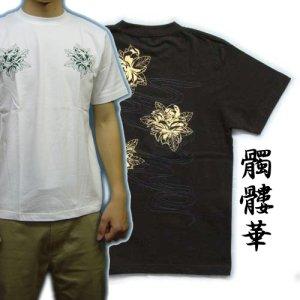 画像1: 紅雀 和柄 【髑髏牡丹の流水】 Tシャツ (名入れ刺繍可)通販 刺青 和彫り デザイン